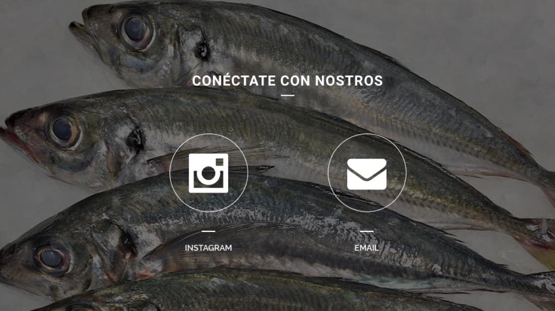 peixexpres-noticias-web-4